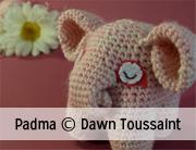 © Dawn Toussaint