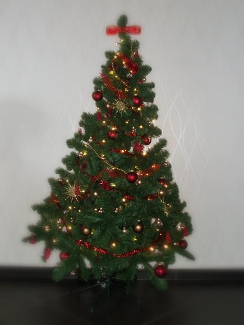 kerstboom 01